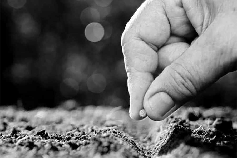 """""""..Kerajaan itu seumpama biji sesawi….. Memang biji itu yang paling kecil …"""""""